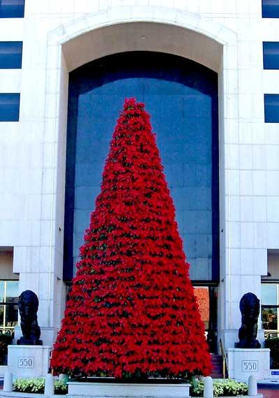 555-holiday-tree